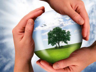 понятие об экологии