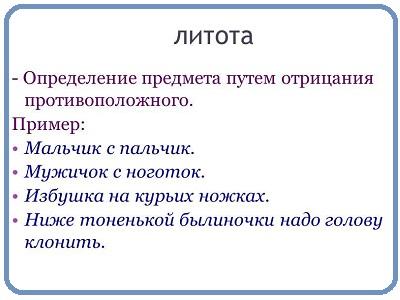 определение литоты