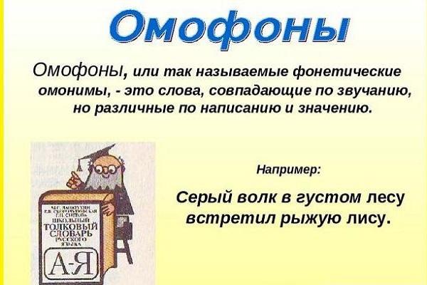 значение омофонов