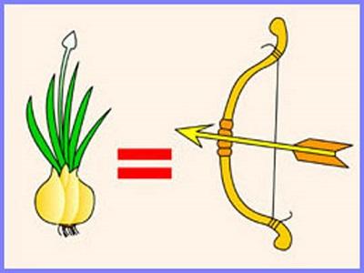 разные значения слова лук