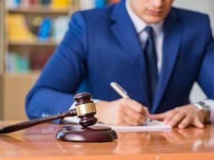 виды юриспруденции