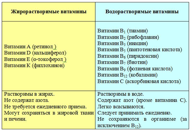 Разновидности витаминов